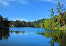 No 1 b2b travel agent in kerala, B2B Promotional tour packages in